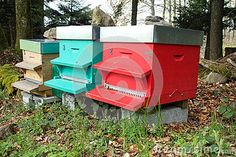Photo about A close up image of three active beehives in Switzerland with stainless steel roof tops and comb entry ways. Image of mountain, summer, tops - 71012184 Roof Tops, Entry Ways, Permaculture, Switzerland, Stainless Steel, Stock Photos, Outdoor Decor, Image, Entryway
