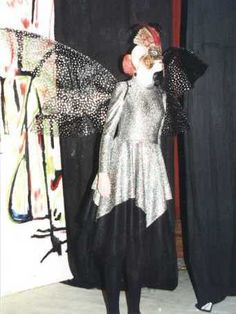 Fairy Wings`costume