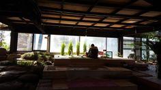 [남양주 별내] 전면유리 식물원카페, 비루개 : 네이버 블로그