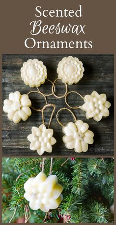 This simple tutorial shows you how to make beautiful scented ornaments from beeswax and essential oils. A great natural way to decorate your holiday tree.
