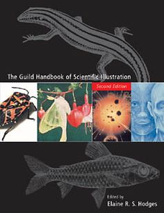 Guild Handbook of Science Illustration, 2nd Ed. | GNSI