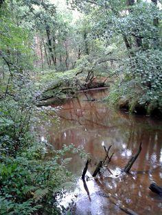 Leudal nature area in Limburg - Netherlands.