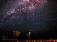 Australian Desert Night Sky  Taken in Australia.  Camera: E-M1 Lens: OLYMPUS M.12-40mm F2.8 Focal Length: 12mm Shutter Speed: 20sec Aperture: f/2.8 ISO/Film: 10000  Image credit: http://ift.tt/29yeEtS Visit http://ift.tt/1qPHad3 and read how to see the #MilkyWay  #Galaxy #Stars #Nightscape #Astrophotography