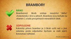 Které potraviny jíst ve kterou denní dobu | ProKondici.cz
