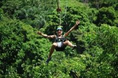 Tours & Excursions in St Kitts | zip lining?
