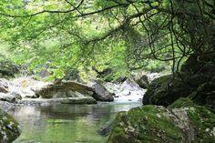 奈良県 川上村|ニッポン移住・交流ナビ JOIN - 田舎暮らしを応援します -