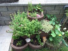 Radi varíte spoužitím čerstvých byliniek achcete ich mať hneď po ruke? Tu je riešenie, ktoré sa dá realizovať aj na balkóne aje veľmi jednoduché. Dá sa vpodstate pripraviť doslova za pár dní avýhodou je okamžitý prístup kvašim obľúbeným ingredienciám…   Orientačné náklady: cca 60-80 €  Čo budete potrebovať: betónové tvárnice na hlinu, hydroizolačnú, … Continued