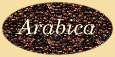 Arabica is the our latest musical entertainment. It tells the intriguing story of the history, production and trading of coffee. The main ch...