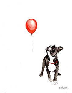Boston Terrier Pup vs. balloon by SmileandNodStudios on Etsy, $15.00