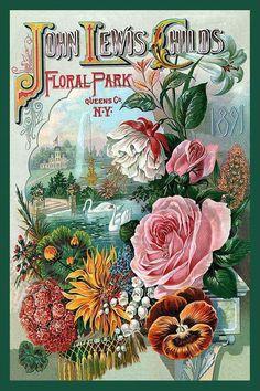 John Lewis Childs Floral Park, N.Y. 1891