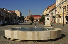 Fountain, Cluj-Napoca, Romania Entry Gates, In 2015, Wall Cladding, Roof Design, Romania, Natural Stones, Fountain, Stairs, Mansions