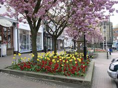 East Grinstead (87) High Street © Zara Dalrymple 2011 by Zara Flora, via Flickr #eastgrinstead http://www.eastgrinstead.gov.uk/tourism/