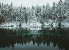 "marinanawe: ""Winter fairytales by marina weishaupt (500px / flickr / instagram) """