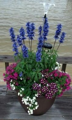 Great Container garden with a hardy sun loving group of plants that are easy to . Great Container garden with a hardy sun loving group of plants that are easy to grow: Salvia Blue Victoria, Bacopa, Verbena, Superbells Cherry Red by letitia Container Flowers, Flower Planters, Garden Planters, Flower Pots, Planter Pots, Planter Ideas, Full Sun Container Plants, Succulent Containers, Fall Planters