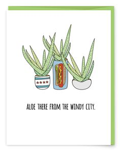 Aloe There From Chicago - The Windy City | Plant Pun Greeting Card from Humdrum Paper