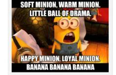 Soft Minion