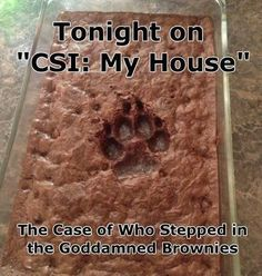Tonight On CSI : My House,  Click the link to view today's funniest pictures!