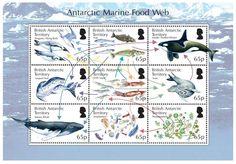 Antarktische Nahrungsketten auf Briefmarken
