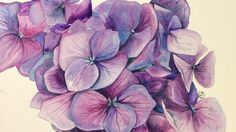 Watercolor Hydrangeas on COLD Pressed Painting Demonstration