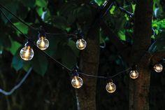 20 Clear Warm LED Festoon Starter Set Light Bulb Garland - Black from The Farthing Oscar Party, String Lights Outdoor, Outdoor Lighting, Ideas Para Decorar Jardines, Clear Light Bulbs, Starter Set, Party Lights, Luz Led, Garden Styles