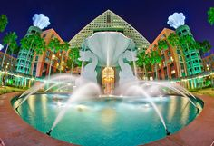 Dolphin Resort at Walt Disney World, just stayed here and really, really lilted it a lot. Disney Hotels, Disney World Resorts, Walt Disney World, Disney World Theme Parks, Disney Vacations, Disney Parks, Disney Disney, Park Resorts, Orlando Resorts