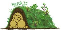 hugelkultur - raised garden beds that need no irrigation? How is it that I have never heard of this?