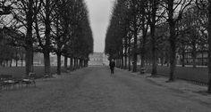 Frances walking in Tuileries Garden in Paris. Noah Baumbach, Cinematic Photography, Film Grab, Film Stills, Movies Showing, Cinematography, I Movie, Sidewalk, Paris