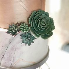 4 Sugar Succulents Tutorial available in my online shop. Button Cake, Cake Decorating Classes, Online Tutorials, Cake Videos, Cake Tutorial, Wedding Trends, Greenery, Wedding Cakes, Succulents