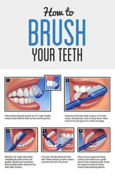 The proper way to brush your teeth, including an inforgraphic!