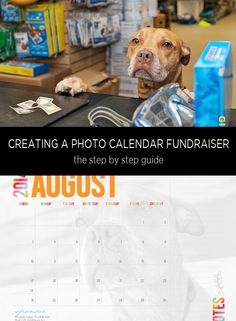 Creating a photo calendar to raise funds is a great way to embrace the community and raise a large amount of money. See the unique way we created a photo calendar that raised over $5K for our local shelter.