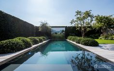Pool Design Ideas - Photos of Pools. Browse Photos from Australian Designers & Trade Professionals, Create an Inspiration Board to save your favourite images. Outdoor Landscaping, Outdoor Pool, Outdoor Gardens, Backyard Pool Designs, Swimming Pool Designs, Garden Swimming Pool, Pool Landscape Design, Minimalist Garden, Modern Pools