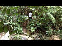 The Dusun in Negri Sembilan