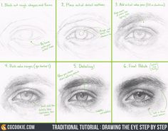 Traditional Tutorial: Drawing the Eye Step by StepArtist: Tim Von Rueden (vonn)Want to see the process with tips in real time and how to draw the eye with just pencil and paper? Then watch now on the site here: https://cgcookie.com/course/facial-features/