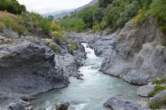 Ausflug zur Gole dell'Alcantara Schlucht Sicily, River, Postcards, Dogs, Outdoor, Pet Dogs, Outdoors, Doggies, Outdoor Games