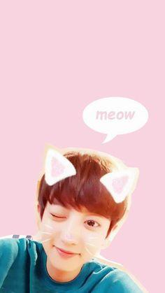Chanyeol Wallpaper   EXO   YEOLSTAGRAM   160906 Cre: owner Kpop Exo, Park Chanyeol, Hunhan, Kyungsoo, Laura Lee, Exo Lockscreen, Pink Phone Cases, Dream High, Xiuchen