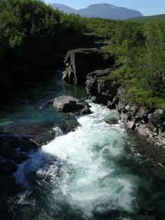 Abisko River, Sweeden. Plan an amazing holiday here with us http://www.yourtravelplanners.com.au/