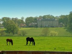 Mt. Juliet Estate, Ireland - stayed here one night.  Very beautiful and rural.