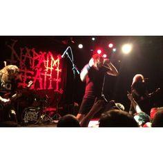 Naplam Death, Melvins, Melvins,  Napalm Death, Napalm Death, Melvins & MELT BANANA performed on Thursday at Music Hall of Williamsburg