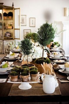 Lovely topiary herbs as centerpieces.