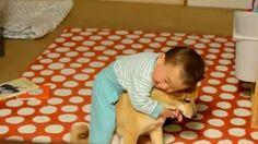 Teneri cuccioli Notizie: Amore incondizionato tra un bimbo e un cagnolino/V...