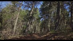 Cyprus Troodos Mountains H - YouTube