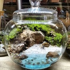 39 DIY Sand Art Terrarium Ideas & Projects Everyone Will Love - Fairy garden wedding Terrarium succulentes Mini Terrarium, Terrarium Cactus, Terrarium Scene, Garden Terrarium, Glass Terrarium, Succulents Garden, Terrarium Ideas, Terrarium Wedding, Hanging Terrarium