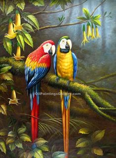 Hand Painted Beautiful Stretched/ Framed Modern Home Wall Decoration Art Canvas Oil Painting, Parrot Canvas Oil Painting Tropical Art, Tropical Birds, Exotic Birds, Paintings Famous, Animal Paintings, Oil Paintings, Oil Painting On Canvas, Canvas Art, Painting Art