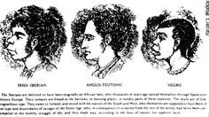 The slaves that time forgot-- We've all been taught the horror's of the African slave trade. It's in all the school books and in plenty of Hollywood movies. But for some reason the largest group of slaves in the British . Irish Celtic, Irish Men, Irish Independence, American Cartoons, Irish People, Images Google, 17th Century, Black History, American History