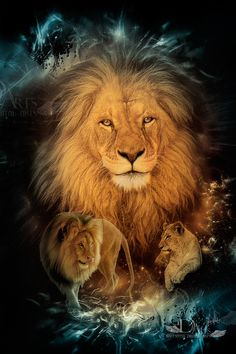 Bono by greenfeed - Tattoo Portal Lion Images, Lion Pictures, Lion And Lioness, Lion Of Judah, Animals And Pets, Cute Animals, Lion Love, Lion Wallpaper, Le Roi Lion