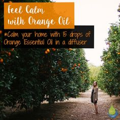 Feel calm with Orange Oil 🌸🌸🌸 Calm your home with 15 drops of Orange…