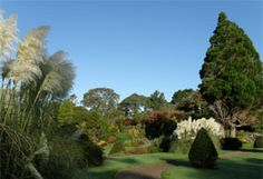 Autumn colours at Muckross House Killarney–Gardens of Ireland – Killarney Attractions - Killarney National Park –Muckross Park Ireland Vacation, Ireland Travel, Ireland Killarney, Places Ive Been, Golf Courses, National Parks, Home And Garden, Gardens, Tours