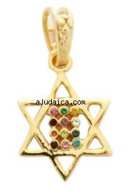 Gold Filled Mini Twelve Tribes Star of David Pendant