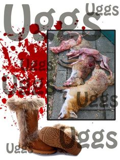 UGGS are ugly and full of torture and death. Don't wear this winter. Go fur free.