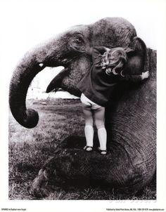 John Drysdale (An Elephant Never Forgets) Art Poster Print Masterprint Photo Elephant, Elephant Love, Photo Vintage, Vintage Photos, Black White Photos, Black And White Photography, Elephas Maximus, Elephants Never Forget, Foto Fashion